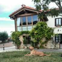 fachada con perro